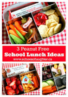 3 Peanut Free School Lunches