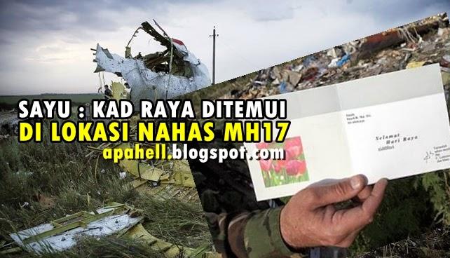 Sayu : Gambar Sekeping Kad Raya Ditemui di Tempat Nahas MH17