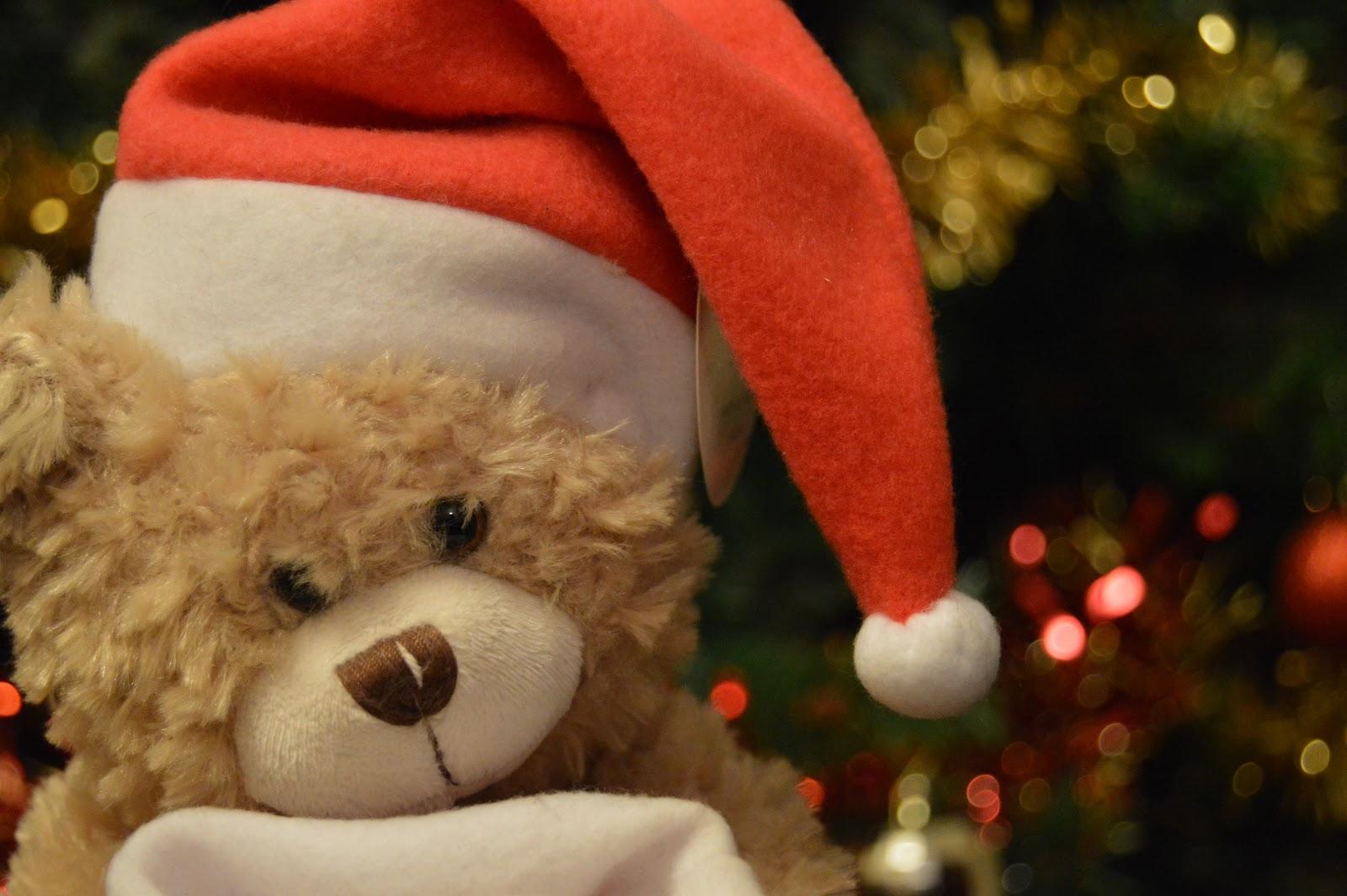 teddy, christmas, bokeh, cute, 2014, what i got for christmas
