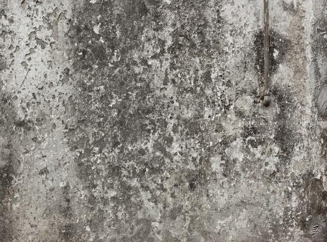 Zombie Skin Texture