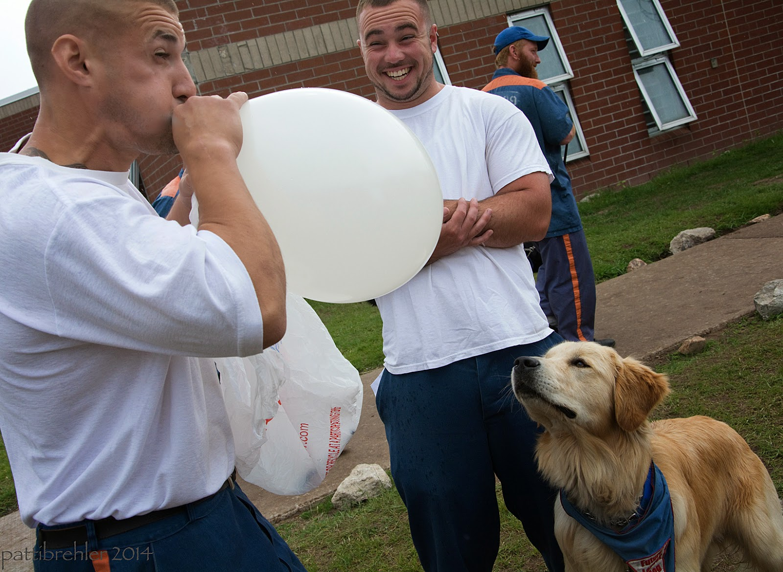 A man dressed in a white t-shirt and blue prison pants is standing on the left facing right and blowing up a big white balloon. His face is straining with the effort. To his right facing the camera is another man dressed in a white t-shirt and blue prison pants. His arems are folded at his chest and he is smiling widely at the other man. A golden retriever with the Futurel Leader Dog bandana is standing on the right looking up at the balloon. There is a man dressed in the blue prison uniform and a blue baseball hat in the background looking to the right. The men are standing on grass and there is the brick wall of the unti behind them.
