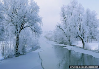 Winter Wonderland Wallpaper PC