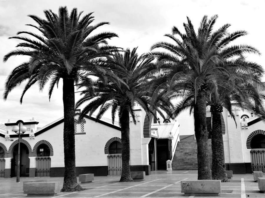 La plaza...