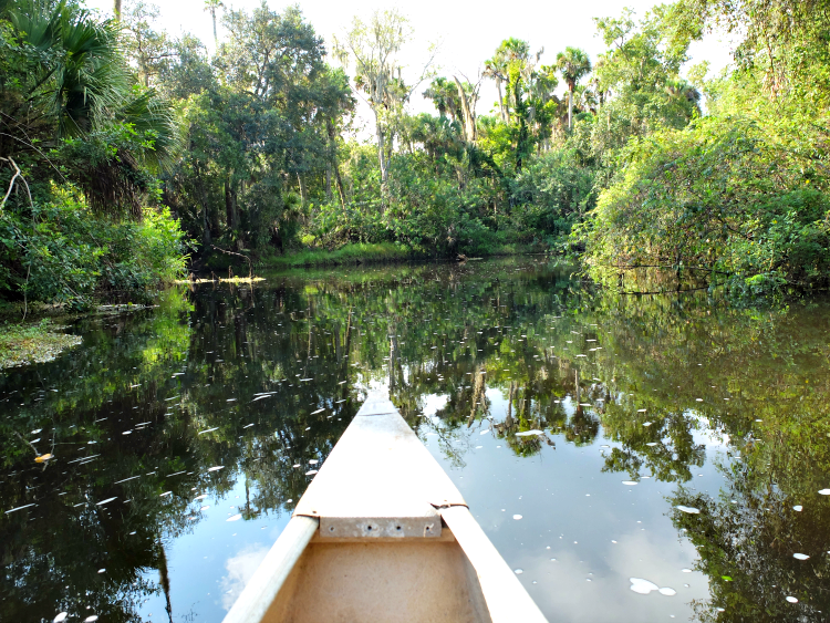 Brevard County Water Recreation, Turkey Creek, Florida boating