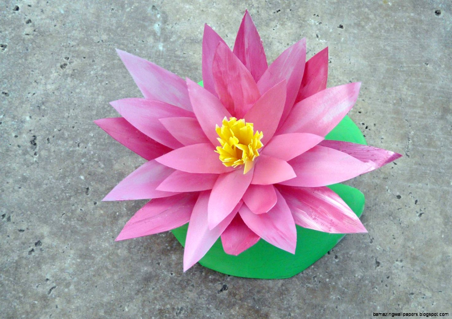 Lily Pad Flower Painting Amazing Wallpapers