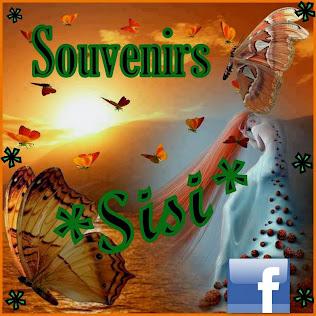 """El stand de : """" SOUVENIRS SISI"""""""