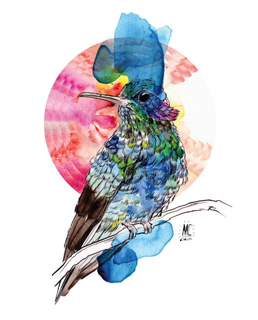 Bird: Watercolour, Pencil, Digital Composition, Brush And Ink