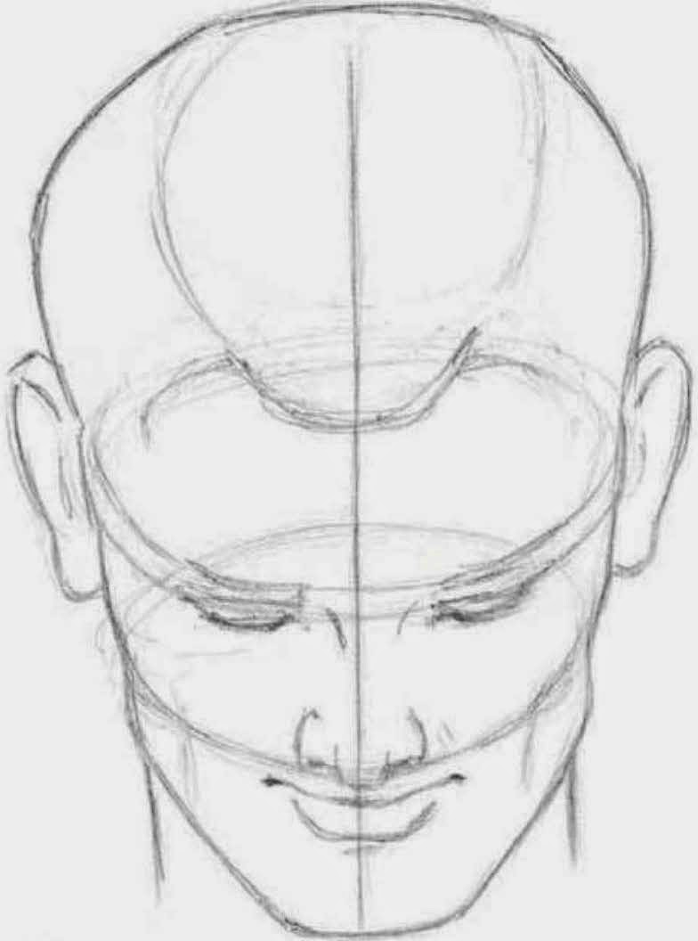 Head Tilted Back Drawing Looking Down When The Head is