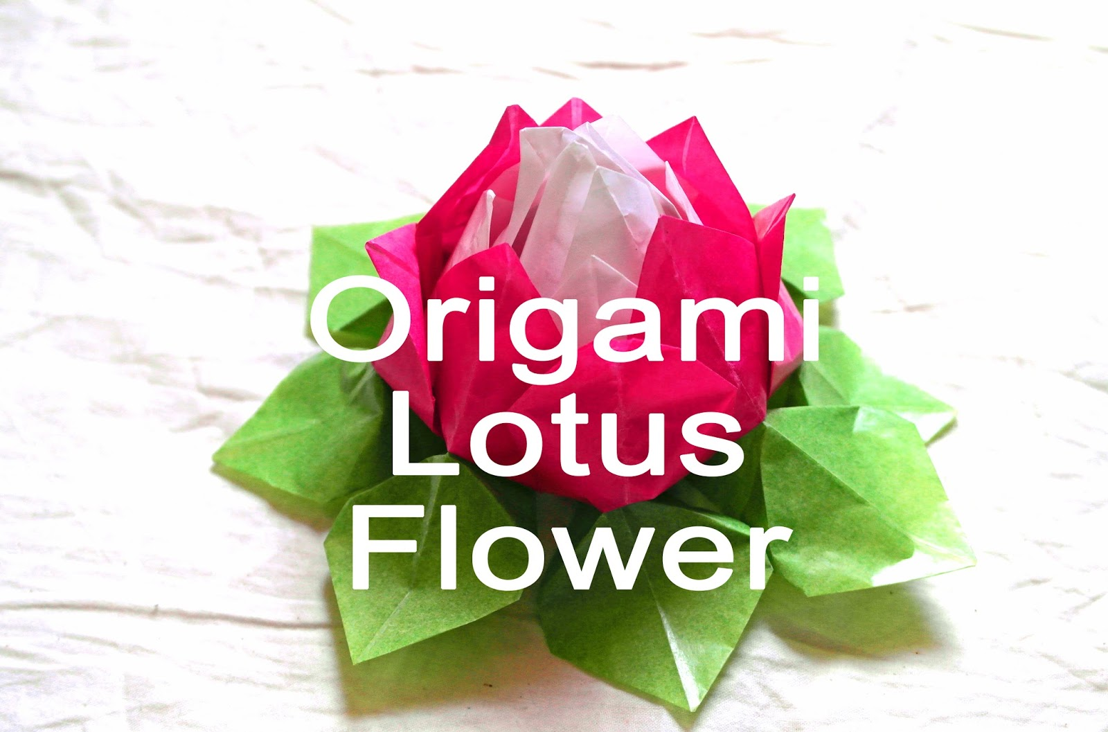 Our Creative Chaos Coffee Origami Lotus Flower
