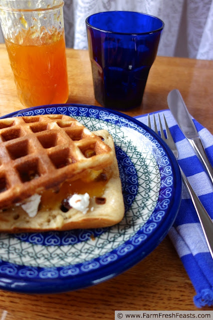 http://www.farmfreshfeasts.com/2013/05/sweet-or-savory-yeasted-waffle.html
