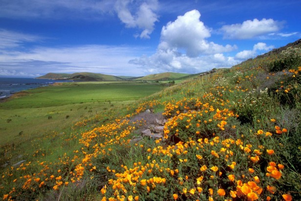 Most Beautiful Places Of California Ladies Mails