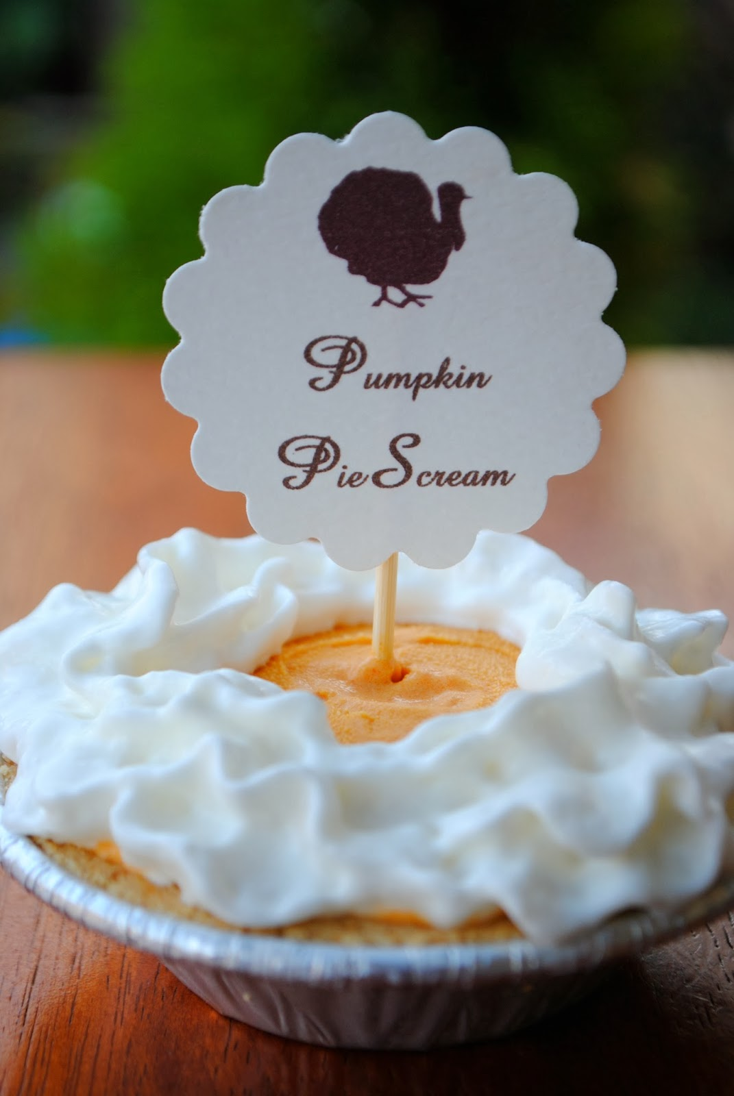 Pumpkin Ice Cream Pies