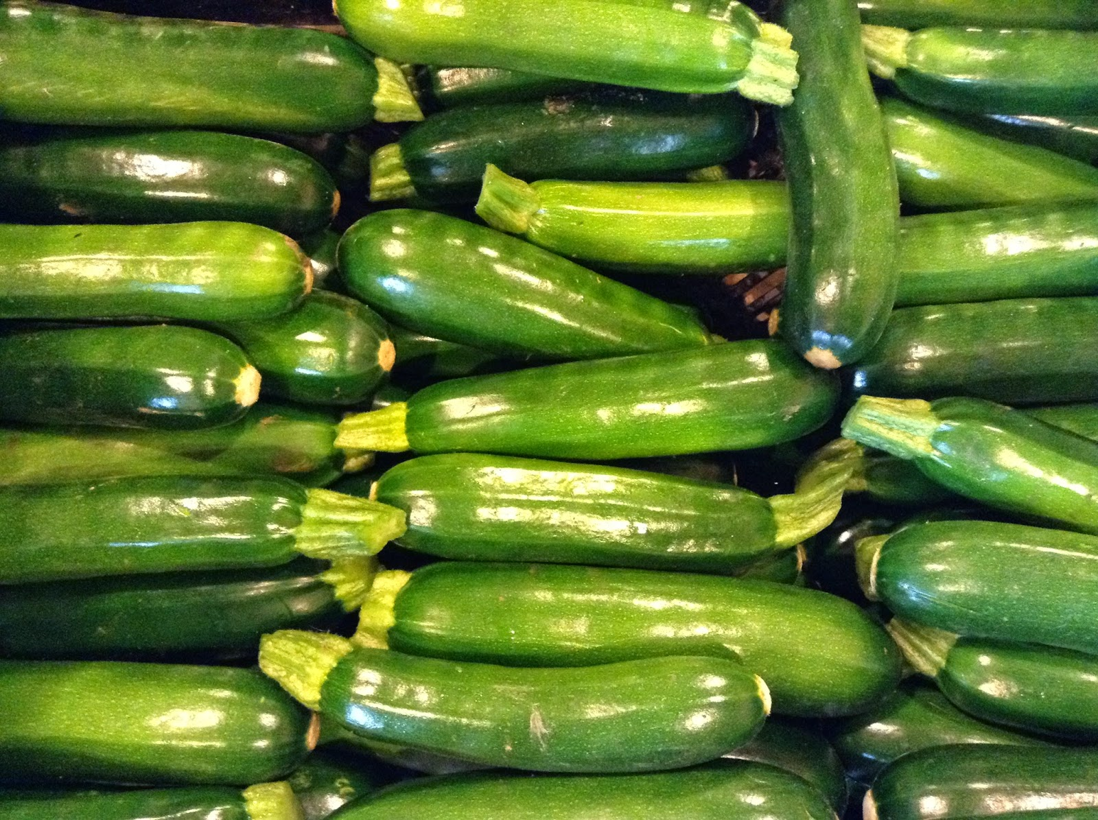 Beautiful zucchini