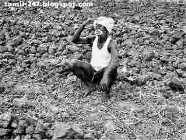 Tamil kavidhaigal: Indraya vivasayam இன்றைய விவசாயத்தின் நிலைமை