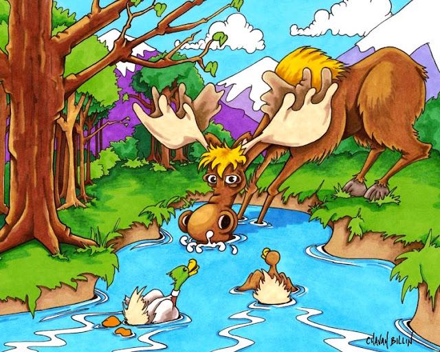 NH Moose by Chavah Billin