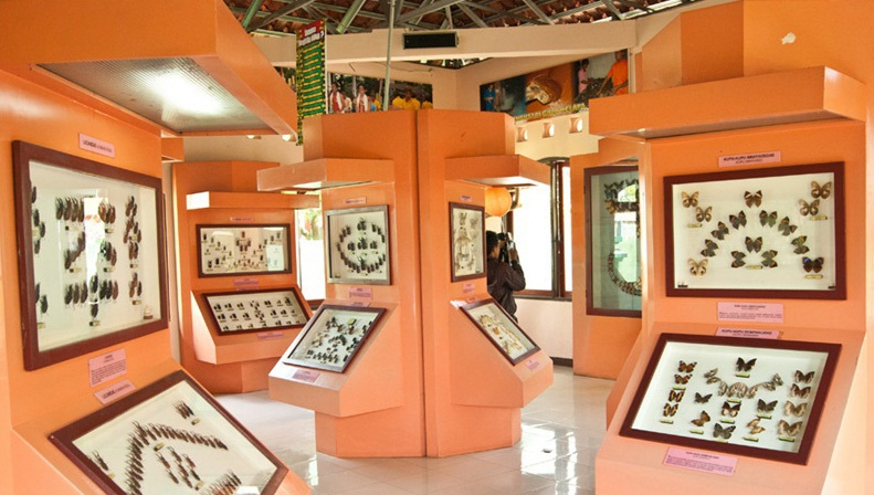 Daftar Tempat Wisata Yang Cocok Anda Kunjungi di Purbalingga