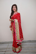 Priyal Gor Dazzling in Red Saree-thumbnail-13