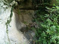 El racó de la Font de l'Avellanosa