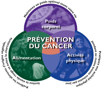 Alimentation et cancer.pdf document téléchargeable