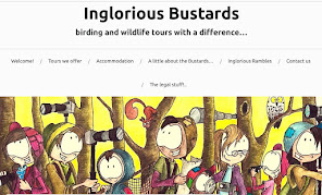 Inglorious Bustards