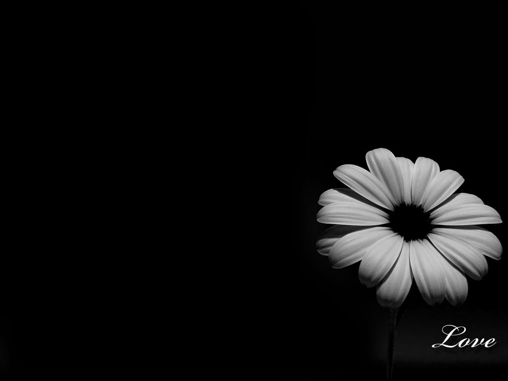 Wallpaper black white,...