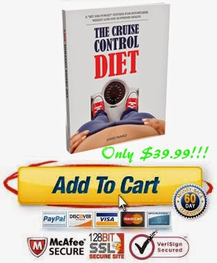 the cruise control diet program download