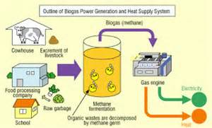 Biomass Use Power For Our Electricity Needs