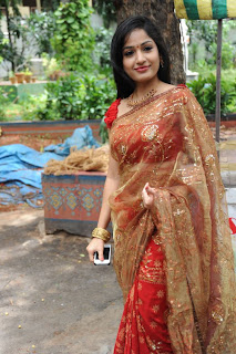 madhavi latha  Pictures in saree 1.jpg