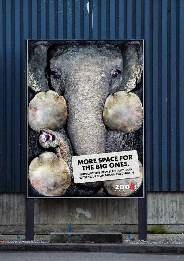 advertisement-design-7
