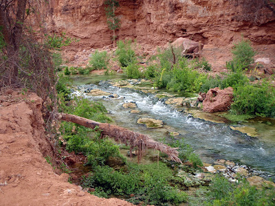 Natural stream on the Havasu Canyon