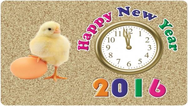 Happy New Year 2016 HD greetings