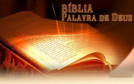 Você é Católico(a). Leia a Bíblia!