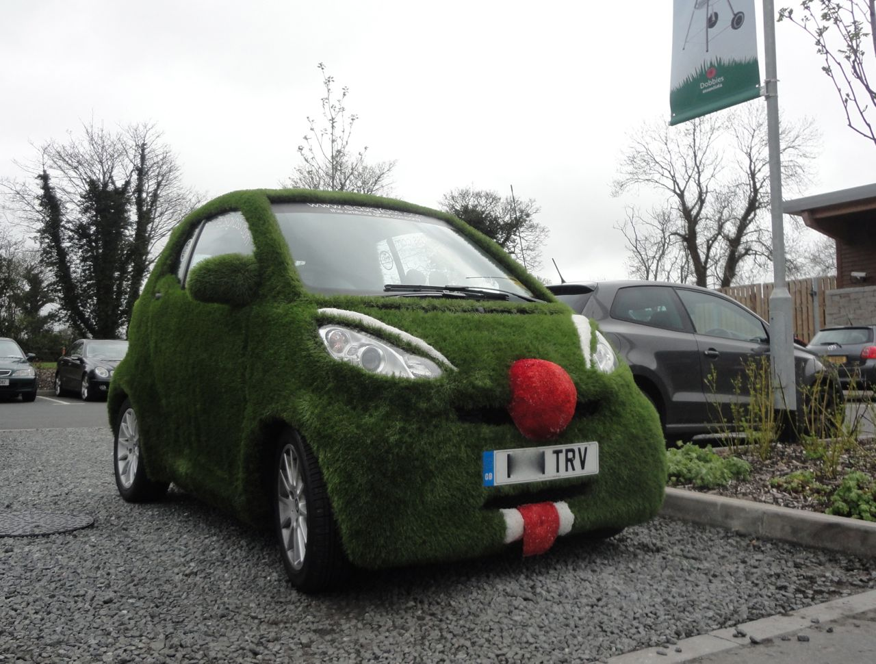 EasiBug By EasiGrass Grass Covered SMART Car In Dobbies Park Lisburn