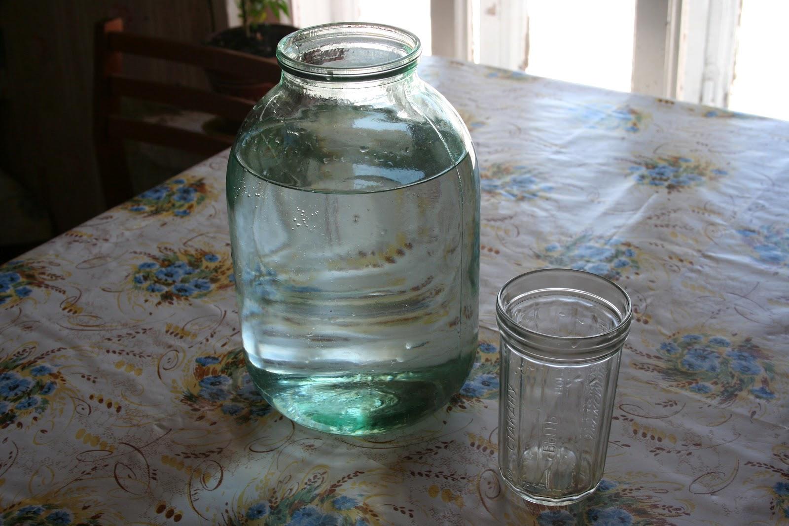 Сохранить березовый сок в домашних условиях 293
