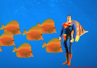 Superman desktop wallpapers Superman Standing Tall at Fishes Aquarium wallpaper