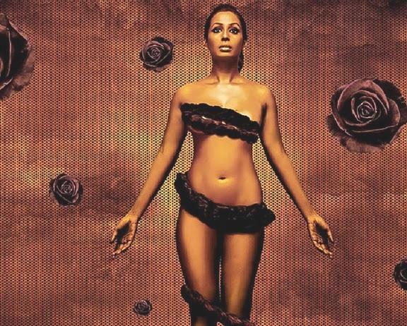 The kashmira shah bikini pics takes the