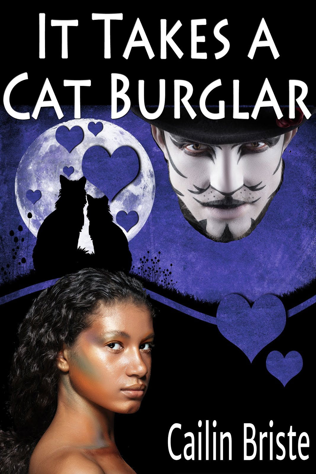 It Takes a Cat Burglar