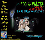 100 DE PALETA (escuchalos acá)