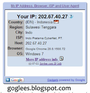 Widget IP Address Pengunjung yang Resmi dari Google
