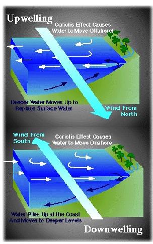 Aprender mais geografia upwelling e downwelling o upwelling e o downwelling so movimentos de massa do oceano que afetam a superfcie e as correntes profundas estes movimentos so essenciais na agitao ccuart Choice Image