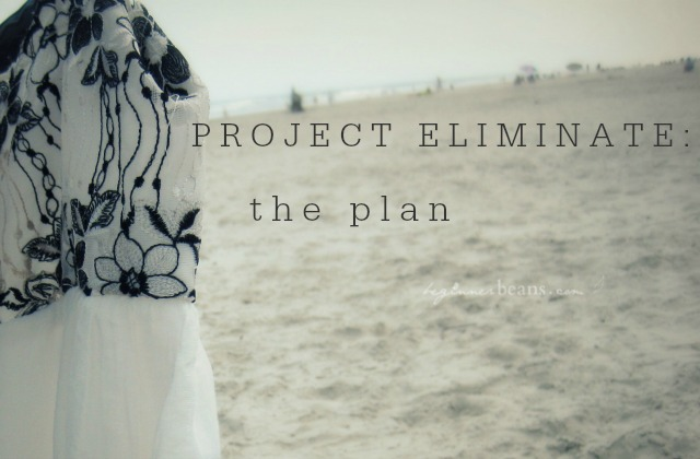 Project Eliminate: The Plan