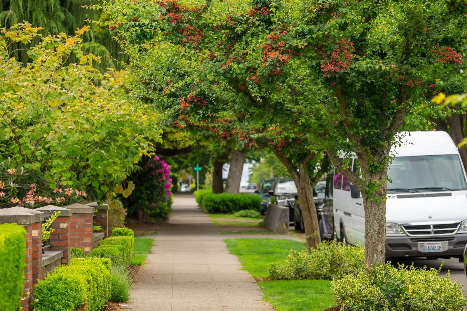 Парк Керри находится в центре престижного района Квин Энн. Полюбовавшись панорамой даунтауна, мы отправились погулять по его зелёным улицам.