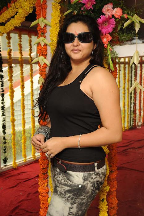 namitha ,namitha photo gallery