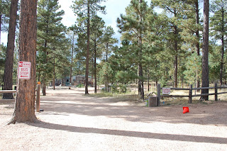 80908 | www.benhomes.com | Black Forest Colorado Springs Real Estate | Homes for Sale in Black Forest | www.benhomes.com