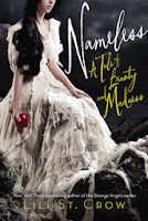 nameless by lili st. crow book cover