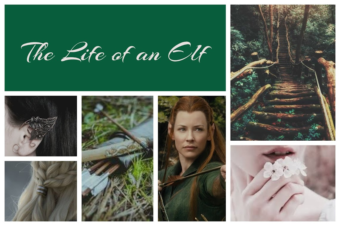 The Life Of An Elf