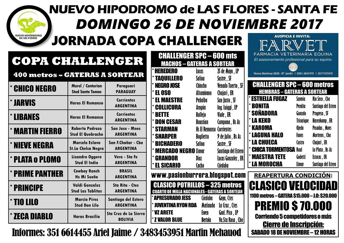 LAS FLORES - 26 - TAPA