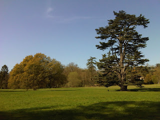 Compton+Verney+Lucombe+Oak-#CVGrounds