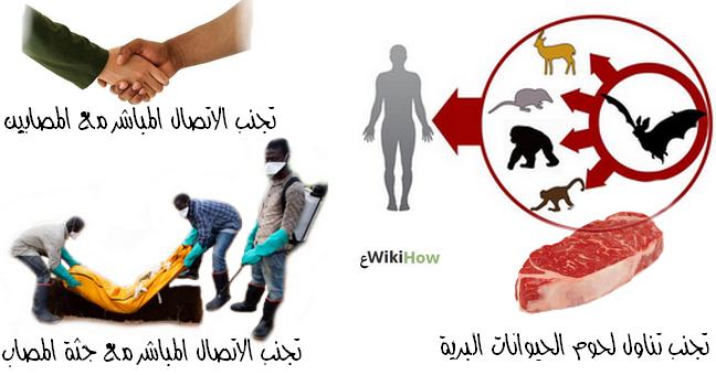 طرق إنتشار فيروس الإيبولا، وسائل انتقال فيروس الإيبولا، أسباب إنتشار الإيبولا