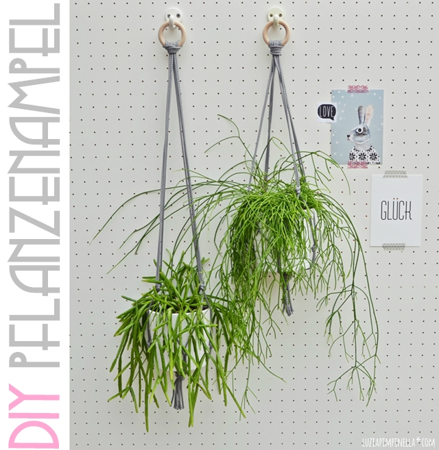 DIY | pflanzen-haengeampel aus paracord selbermachen | luziapimpinella.com